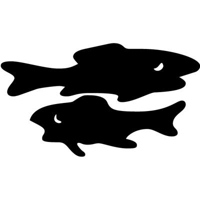 Fische 3
