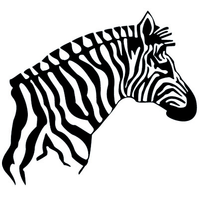 Zebrakopf